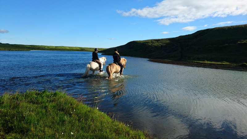 Riding through rivers with Icelandic Horseworld.